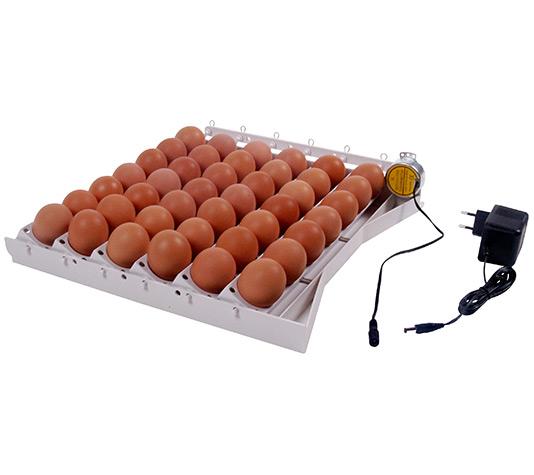 Bandeja volteo autom tico de huevos finca casarejo for Bandejas para huevos