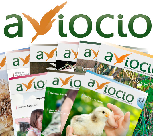 revista de gallinas
